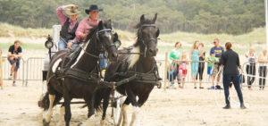 Paardenshow Western Terschelling arrangement - Westcord Hotels