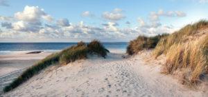Strand van Vlieland - Westcord Hotels