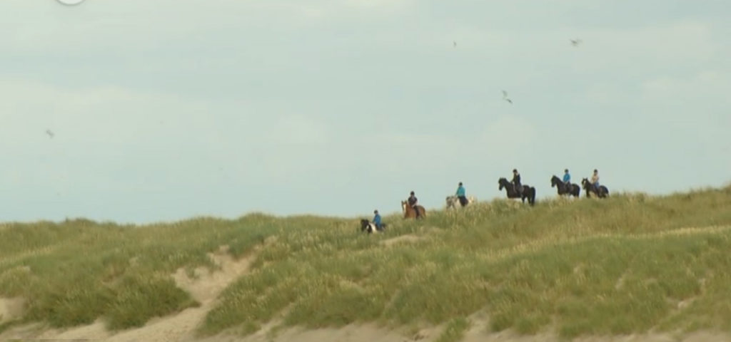 paardrijden-op-vlieland-manege-de-seeruyter-westcord-strandhotel-seeduyn-1 - Westcord Hotels