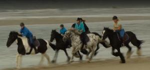 paardrijden-op-vlieland-manege-de-seeruyter-westcord-strandhotel-seeduyn - Westcord Hotels
