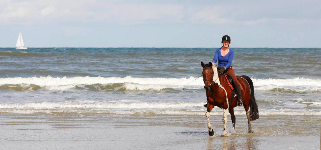 paardrijden-op-vlieland-westcord-strandhotel-seeduyn-manege-de-seeruyter-2 - Westcord Hotels
