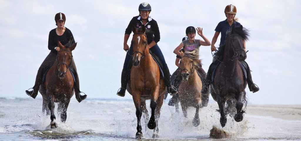 Paardrijden op Vlieland - WestCord Hotels