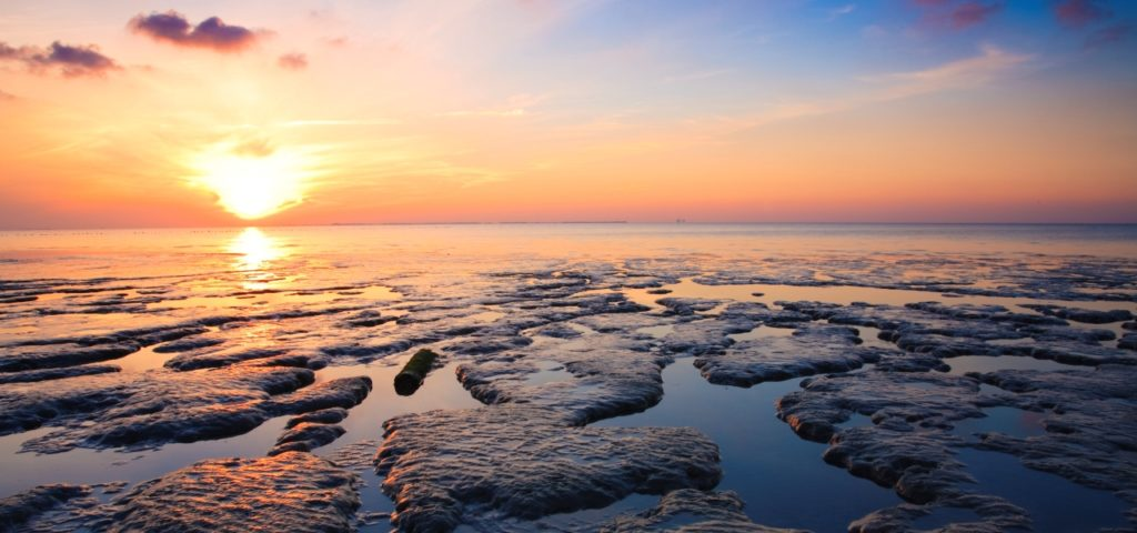 Waddengebied mooiste natuurgebied van Nederland - WestCord Hotels