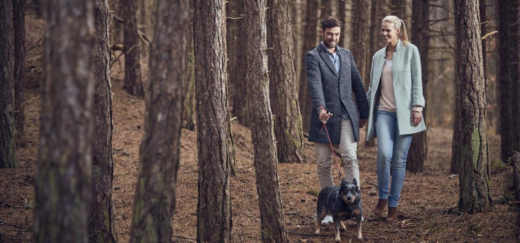 Wandelen in het bos WestCord ApartHotel Boschrijck - Westcord Hotels