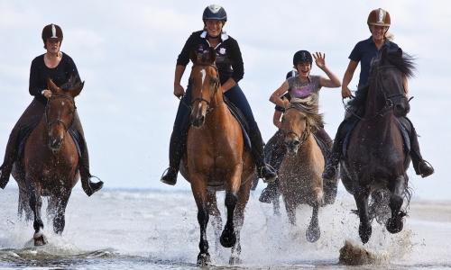 Paardrijden op Vlieland