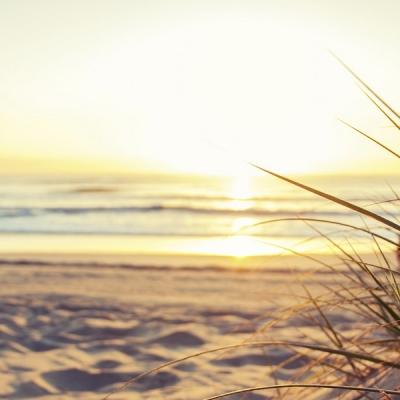 riet-strand-waddeneilanden-westcordhotels