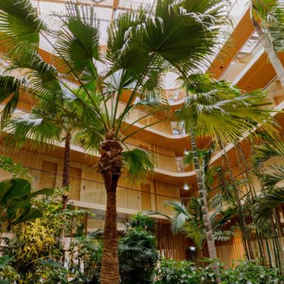 360º foto Subtropische tuin - Hotel Jakarta Amsterdam