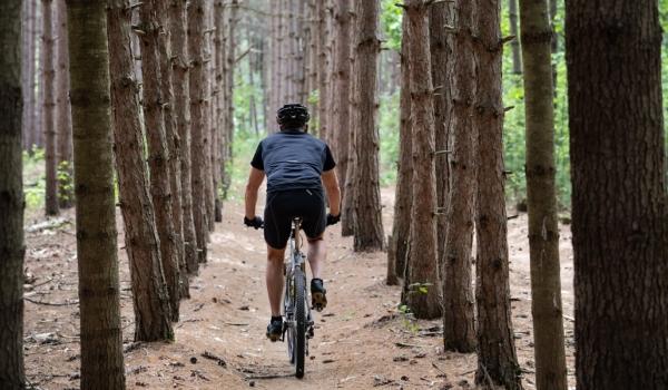 westcord-hotels-mountainbike-blog-veluwe